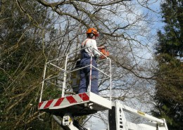 ArBORICULTURAL National Managed Contractor Network